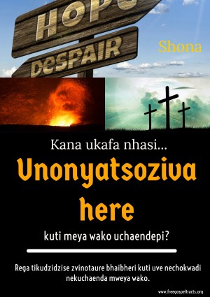 Free Gospel Tracts. (Shona)