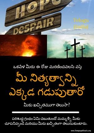 Free Gospel Tracts. (Telugu)