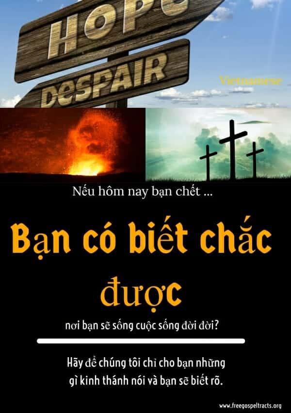Free Gospel Tracts. (Vietnamese)